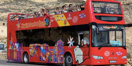 https://aviotravel.eu/images/stories/icons/citysightseeing-bus.png